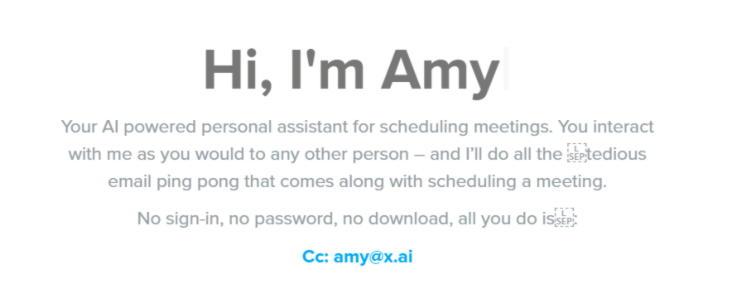 Amy chatbot-Retail Technology