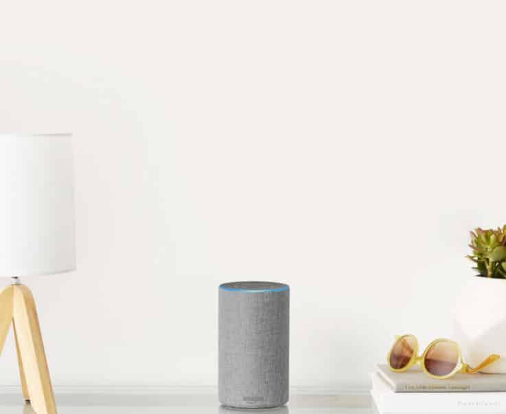 Amazon Echo voice commerce